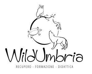 Logo WildUmbria