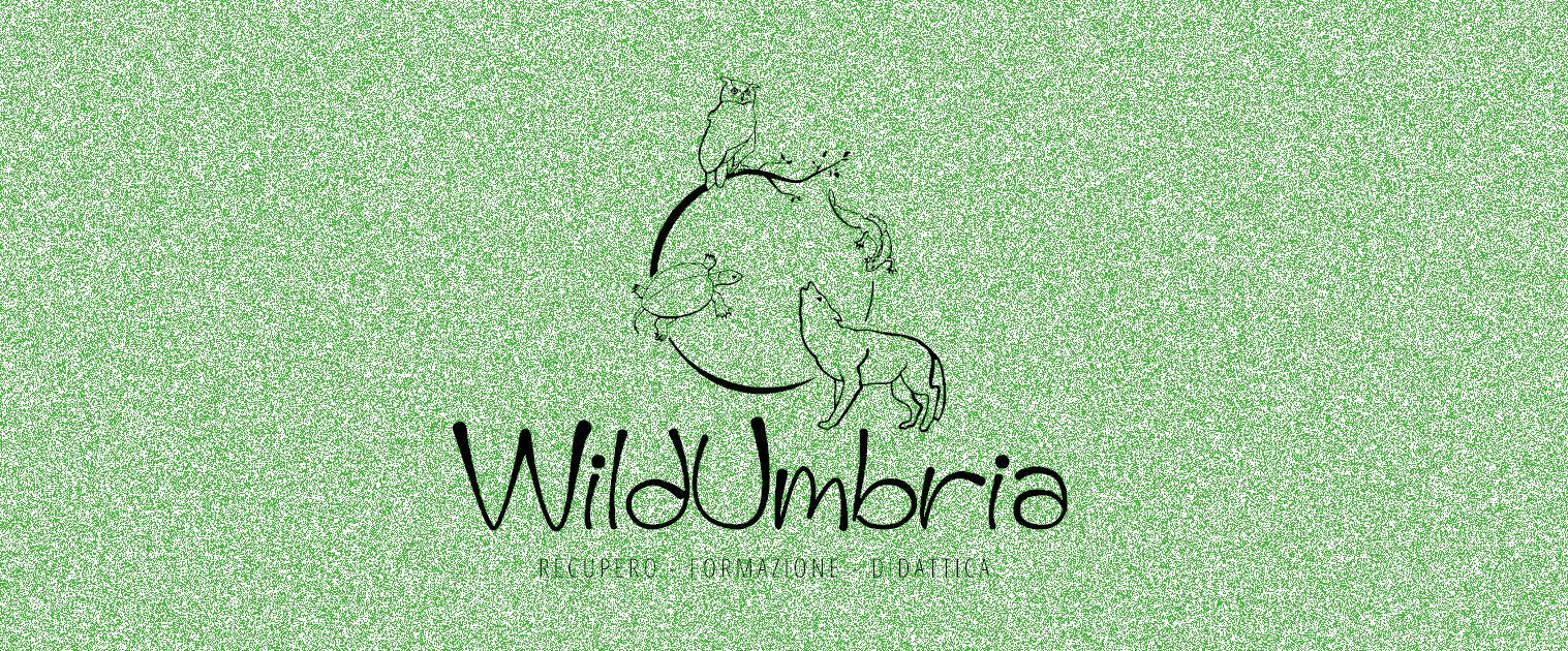Associazione WildUmbria